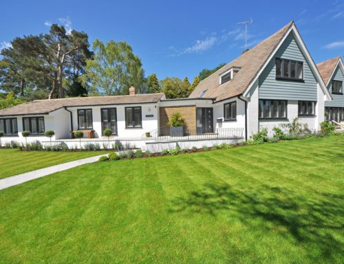 Things to Consider When Landscaping a New Home